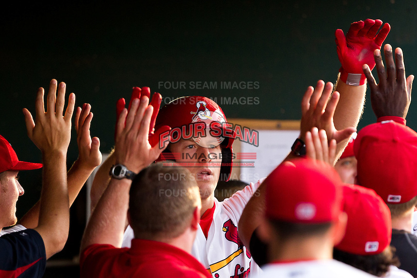 Kyle Conley (35) of the Springfield Cardinals celebrates with teammates in the dugout after hitting a home run during a game against the Arkansas Travelers at Hammons Field on June 12, 2012 in Springfield, Missouri. (David Welker/Four Seam Images).
