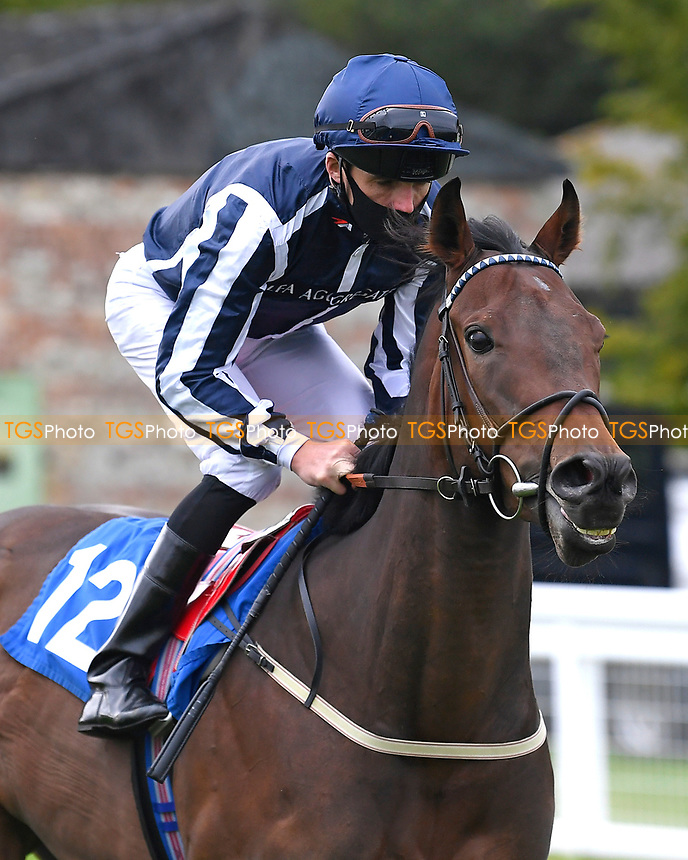 Al Simmo ridden by Martin Harley goes down to the start  of The Venture Security Handicap Stakes  during Horse Racing at Salisbury Racecourse on 11th September 2020