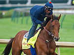 April 30, 2014: Candy Boy, trained by John Sadler, exercises in preparation for the Kentucky Derby at Churchill Downs in Louisville, KY. Scott Serio/ESW/CSM