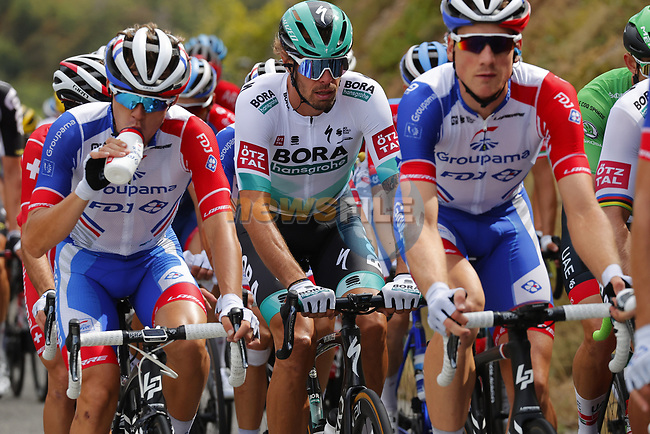 The peloton including Daniel Oss (ITA) Bora-Hansgrohe in action during Stage 3 of Tour de France 2020, running 198km from Nice to Sisteron, France. 31st August 2020.<br /> Picture: Bora-Hansgrohe/BettiniPhoto | Cyclefile<br /> All photos usage must carry mandatory copyright credit (© Cyclefile | Bora-Hansgrohe/BettiniPhoto)