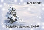 Maira, CHRISTMAS LANDSCAPES, WEIHNACHTEN WINTERLANDSCHAFTEN, NAVIDAD PAISAJES DE INVIERNO, photos+++++,LLPPZS19590,#xl#