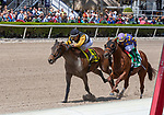 02-29-20 Fountain of Youth Undercard and Scene Gulfstream