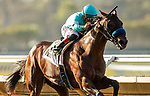 AUGUST 28, 2021:  Rockefeller with Abel Cedillo aboard wins a maiden race at Del Mar Fairgrounds in Del Mar, California on August 28, 2021. Evers/Eclipse Sportswire/CSM