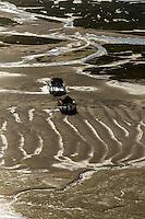 France, Gironde (33),Bassin d'Arcachon, l' île aux oiseaux et les cabanes tchanquées - vue aérienne //  France, Gironde, Bassin d'Arcachon, l' île aux oiseaux ( birds Island) et les Cabanes Tchanquees  ( traditional huts on stills) - aerial view