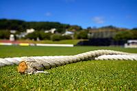 Hallyburton Johnstone Shield women's cricket match between Wellington Blaze and Otago Sparks at the Basin Reserve in Wellington, New Zealand on Sunday, 14 March 2021. Photo: Dave Lintott / lintottphoto.co.nz