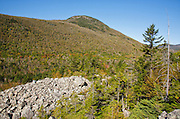 Zealand Notch - Appalachian Trail near Whitewall Mountain during the autumn months in the White Mountains of New Hampshire USA. Zeacliff is in the background.