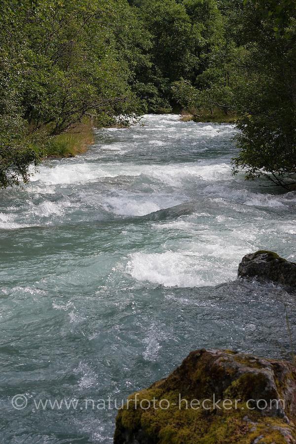 Bach, Gebirgsbach, Fluß, Fluss, Wasser, Stream, rivulet in the mountains, mountain stream, mountain torrent