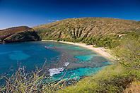 coral reef and white sand beach, Hanauma Bay Nature Preserve, Oahu, Hawaii, Pacific Ocean