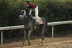 HOT SPRINGS, AR - JANUARY 16: Calvin Borel aboard Treble (11) after winning the 5th race on Martin Luther King Day at Oaklawn Park on January 16, 2017 in Hot Springs, Arkansas. (Photo by Justin Manning/Elipse Sportwire/Getty Images)