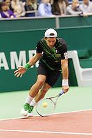 12-2-10, Rotterdam, Tennis, ABNAMROWTT,  Jurgen Melzer