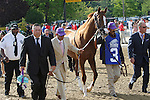 May 17, 2014. California Chrome joins the walkover from barn to track before winning the 139th Preakness Stakes at Pimlico Race Course in Baltimore, MD. ©Joan Fairman Kanes/ESW/CSM