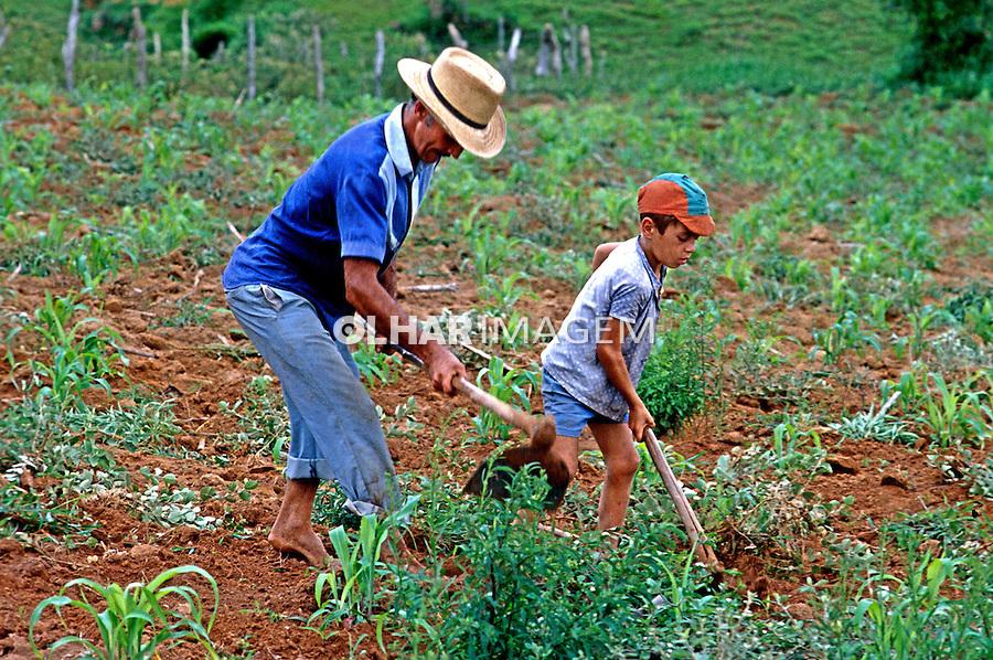 Familia trabalhando em roça de milho, trabalho infantil. Minas Gerais. 1978. Foto: Juca Martins.