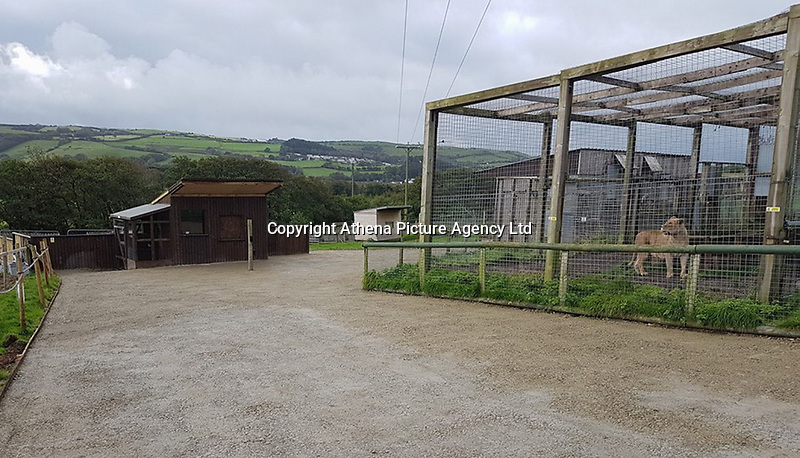 COPY BY TOM BEDFORD<br /> Pictured: General view of the Animalarium in Borth near Aberystwyth, Wales, UK<br /> Re: Dyfed-Powys Police has today been made aware that sometime over the last five days a female lynx has escaped from the Animalarium in Borth. Police are therefore advising public in the area to be alert and vigilant.<br /> The lynx is unlikely to approach people, but may attempt to take livestock or pets as food.<br /> We do however advise that the animal should not be approached as it could become aggressive if cornered. It is believed that the lynx remains in fairly close proximity to the Animalarium, but of course it could potentially go further afield.<br /> Any sightings should be reported by calling 101, or if the lynx is in the process of taking an animal, or appears caught or injured, then please call 999.