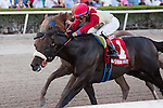 HALLANDALE BEACH, FL - FEBRUARY 25: #1 Unified with Jose Ortiz up goes gate to wire to hold off a late charging Mind Your Biscuits in the Gulfstream Park Sprint (G3) at Gulfstream Park, Hallandale Beach, FL. (Photo by Arron Haggart/Eclipse Sportswire/Getty Images)
