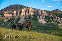 Wyoming cowboys, and horses. Cowboy, Cowboy and Cowgirl photographs of western ranches working with horses and cattle by western cowboy photographer Jess Lee. Photographing ranches big and small in Wyoming,Montana,Idaho,Oregon,Colorado,Nevada,Arizona,Utah,New Mexico. Fine Art Limited Edition Photography Of American Cowboys and Cowgirls by Jess Lee