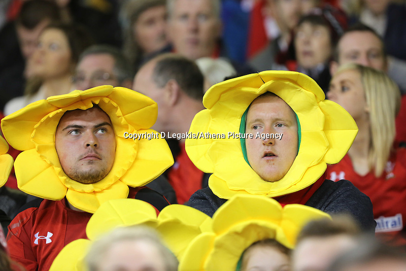 Pictured: Two men Wales supporters. Saturday 15 November 2014<br /> Re: Dove Men Series rugby, Wales v Fiji at the Millennium Stadium, Cardiff, south Wales, UK.