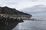 Chinstrap penguin colony at Bailey Head on Deception Island, Antarctic Peninsula.