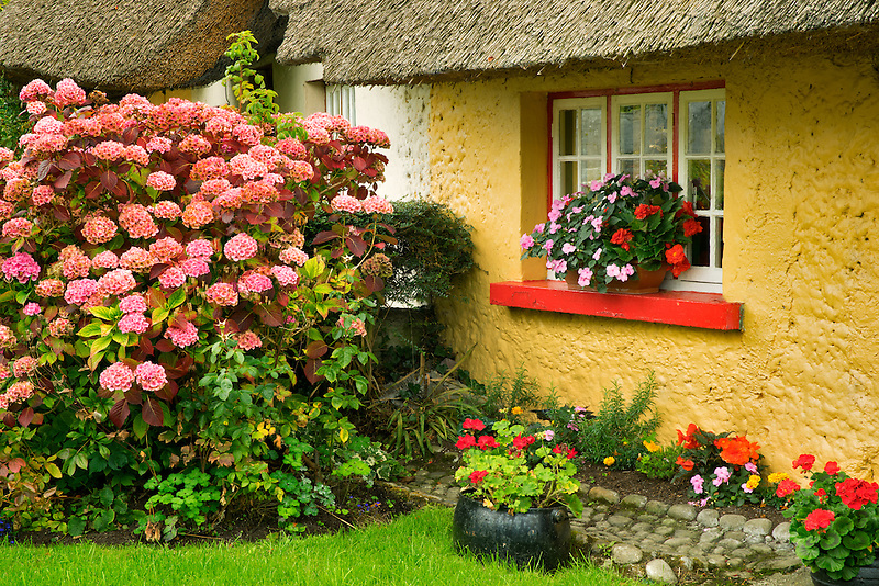 Thatched cotages and flowers in Adare, Ireland.