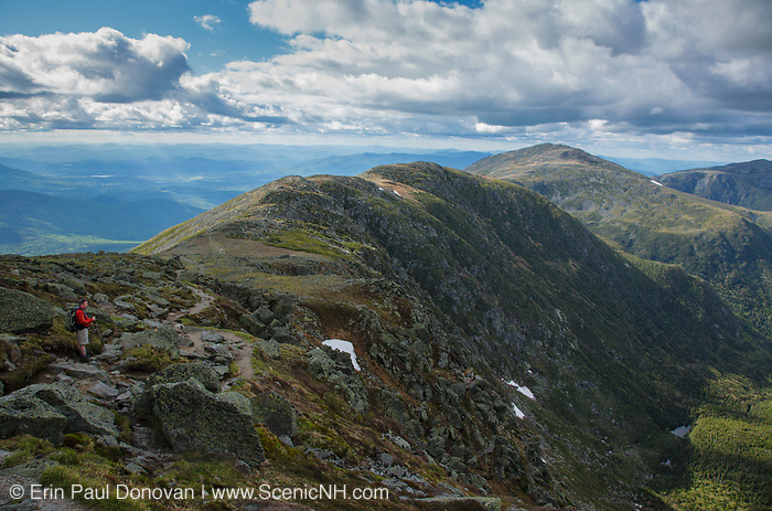 A hiker takes in the view of the Great Gulf Wilderness from along the Gulfside Trail (Appalachian Trail), near the summit of Mt Washington, in Thompson and Meserve's Purchase, New Hampshire on a cloudy day; part of the Presidential Range in the White Mountains. The Great Gulf Wilderness was designated a wilderness in 1964.