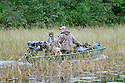 00280-069.08 Duck Hunting: Father and two sons are in jon boat powered by mud motor.  Yellow Lab, wild rice, Max 4.