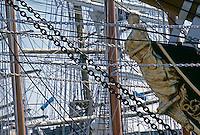L'Amerigo Vespucci è un veliero della Marina Militare , nave scuola per gli allievi ufficiali dell'Accademia navale. La polena