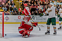 29 December 2018: University of Vermont Catamount Forward Max Kaufman, a Sophomore from Rochester, NY, celebrates Vermont's first goal of the game as the puck gets by Rensselaer Engineer Goaltender Owen Savory, a Freshman from Cambridge, ON, in the final moments of the second period at Gutterson Fieldhouse in Burlington, Vermont. The Catamounts rallied from a 2-0 deficit to defeat RPI 4-2 and win the annual Catamount Cup Tournament. Mandatory Credit: Ed Wolfstein Photo *** RAW (NEF) Image File Available ***