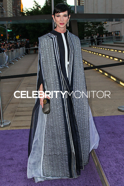 NEW YORK CITY, NY, USA - SEPTEMBER 23: Amy Fine Collins arrives at the New York City Ballet 2014 Fall Gala held at the David H. Koch Theatre at Lincoln Center on September 23, 2014 in New York City, New York, United States. (Photo by Jeffery Duran/Celebrity Monitor)