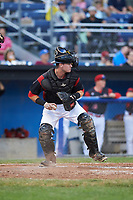 Batavia Muckdogs catcher Alex Jones (43) checks the runner after blocking a pitch in the dirt during a game against the Tri-City ValleyCats on July 14, 2017 at Dwyer Stadium in Batavia, New York.  Batavia defeated Tri-City 8-4.  (Mike Janes/Four Seam Images)