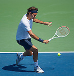 Roger Federer (SUI) wins in the finals at the Western & Southern Open in Mason, OH on August 19, 2012.