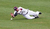 Patrick Drake (5) of the Missouri State Bears tries to make a diving catch in right field during a game against the Northwestern Wildcats at Hammons Field on March 8, 2013 in Springfield, Missouri. (David Welker/Four Seam Images)
