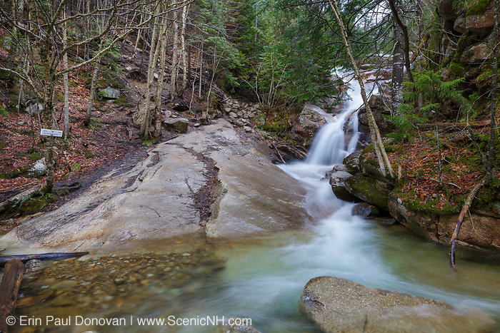 Swiftwater Falls on Dry Brook in Lincoln, New Hampshire on a cloudy spring day during the month of April. This is a trailside waterfall along the Falling Waters Trail in Franconia Notch.