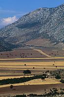 Europe/Turquie/Env de Karkutelli : Chèvres sur le plateau