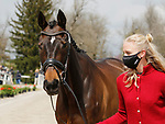 April 21, 2021: 56 FRH Butt's Avondale and Anna Siemer from Germany in the first horse veterinary inspection at the Land Rover Three Day Event at the Kentucky Horse Park in Lexington, KY on April 21, 2021.  Candice Chavez/ESW/CSM