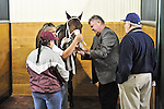 07 February 2010:  Bim Bam with trainer David Brown and owner JD Farms at Gulfstream Park in Hallandale Beach, FL.