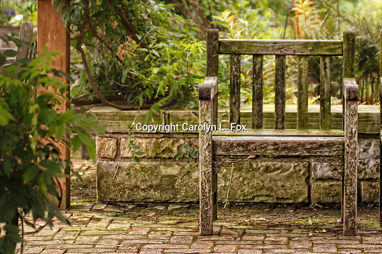 An old chair sits in a garden.
