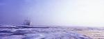 Un coup de sirene annonce le passage du 81 degre nord de latitude. Le bateau navigue dans un brouillard humide. Les premieres plaques de glace apparaissent. Devant nous, la banquise ou pack s etale à perte de vue. Suite au rechauffement climatique sa surface se reduit un peu plus chaque annee. A peine 1000 km de glace toujours plus fragile nous separe du Pole Nord. Dans dix ou quinze ans, on pourra  y aller en bateau...
