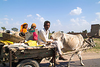 Gypsy family  in cow driven cart, Great Indian Thar Desert, Jodhpur Rajasthan, India