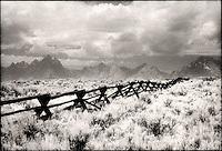 Border fence crossing the landscape<br />