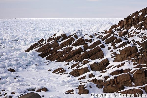 Drift Ice forms during the winter months in the Sea of Okhotsk, Shiretoko Peninsula, Hokkaido, Japan, February 2008