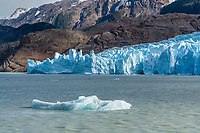 The Grey Glacier and Lago Grey in Torres del Paine National Park, a UNESCO World Biosphere Reserve in Chile in the Patagonia region of South America.