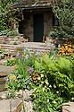 HESCO garden, Leeds, RHS Chelsea Flower Show 2009. Plants include: Primula  beesiana, Primula florindae, Camassia cusickii (wild blue hyacinth).