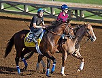 October 27, 2014:  Footbridge, trained by Eoin Harty, exercises in preparation for the Breeders' Cup Classic at Santa Anita Race Course in Arcadia, California on October 27, 2014. John Voorhees/ESW/CSM