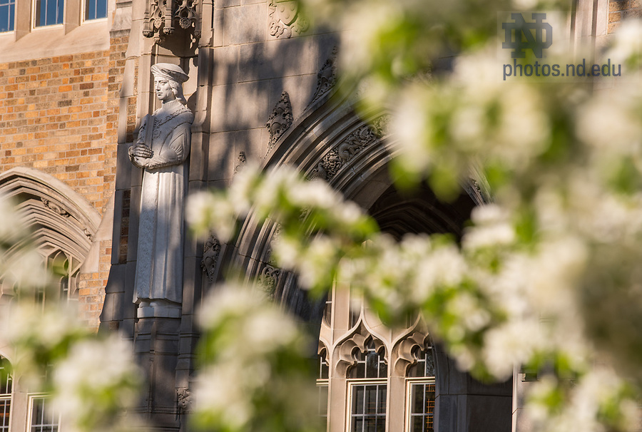 April 18, 2017; Biolchini Hall of Law, St. Thomas More door.  (Photo by Barbara Johnston/University of Notre Dame)