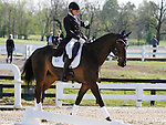 LEXINGTON, KY - APRIL 28: #9 Fernhill By Night and rider Elisabeth Halliday-Sharp in the warm up ring before their Dressage test in the Rolex Three Day Event, Dressage Day 1, at the Kentucky Horse Park in Lexington, KY.  April 28, 2016 in Lexington, Kentucky. (Photo by Candice Chavez/Eclipse Sportswire/Getty Images)