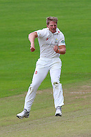 Timm van der Gugten celebrates taking the wicket of Jaik Mickleburgh during Glamorgan CCC vs Essex CCC, Specsavers County Championship Division 2 Cricket at the SSE SWALEC Stadium on 23rd May 2016