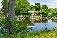 Frau mit SUP vor Kleingärten auf der Dominsel, Brandenburg an der Havel, Brandenburg, Deutschland
