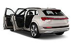 Car images close up view of a 2019 Audi e-tron Advanced 5 Door SUV doors