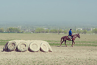 Horseman riding by the kok boru field of sokulul, a village in the vicinity of the kyrgyz capital, Bishkek. Kok-boru is a popular horse game in Kyrgyzstan in which two teams of riders try to carry a goat or calf carcass into the opposing teams endzone.