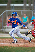 New York Mets Tomas Nido (13) during a minor league Spring Training game against the St. Louis Cardinals on March 31, 2016 at Roger Dean Sports Complex in Jupiter, Florida.  (Mike Janes/Four Seam Images)