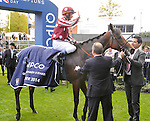 Charm Spirit (no. 8), ridden by Olivier Peslier and trained by Freddy Head, wins the group 1 Queen Elizabeth II Stakes for three year olds and upward on October 18, 2014 at Ascot Racecourse in Ascot, Berkshire, United Kingdom.  (Bob Mayberger/Eclipse Sportswire)